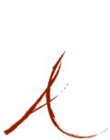 RICALDE MEDIA Logo