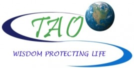 TAO Emergency Management Consulting Logo