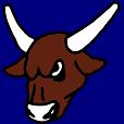 rodeojudge Logo