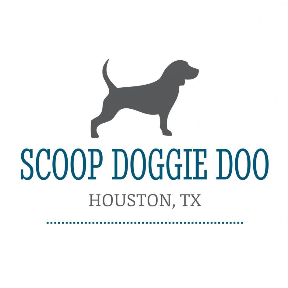scoopdoggiedoo Logo