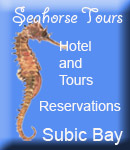 Seahorse Tours & Souvenirs Logo