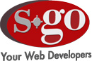 s-go Consulting Logo