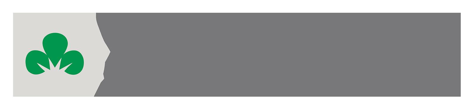 Shamrock Financial Corporation Logo