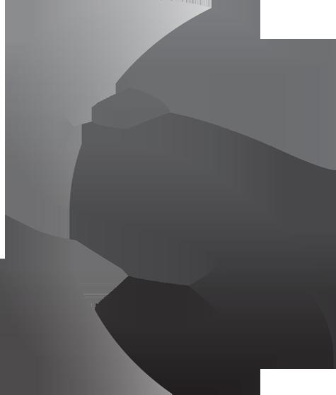 ShipHawk Logo