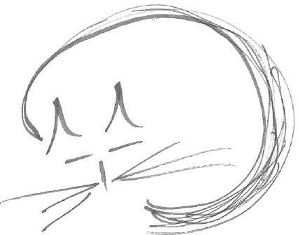 sleepofchampions Logo