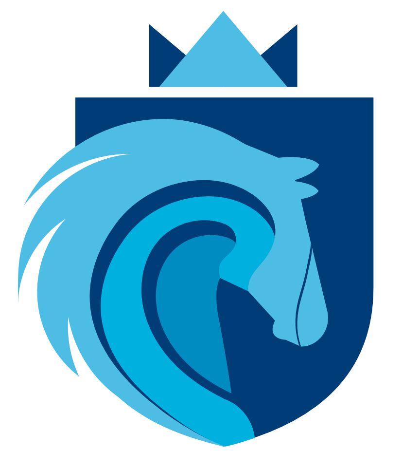 Stallion Market Research Logo