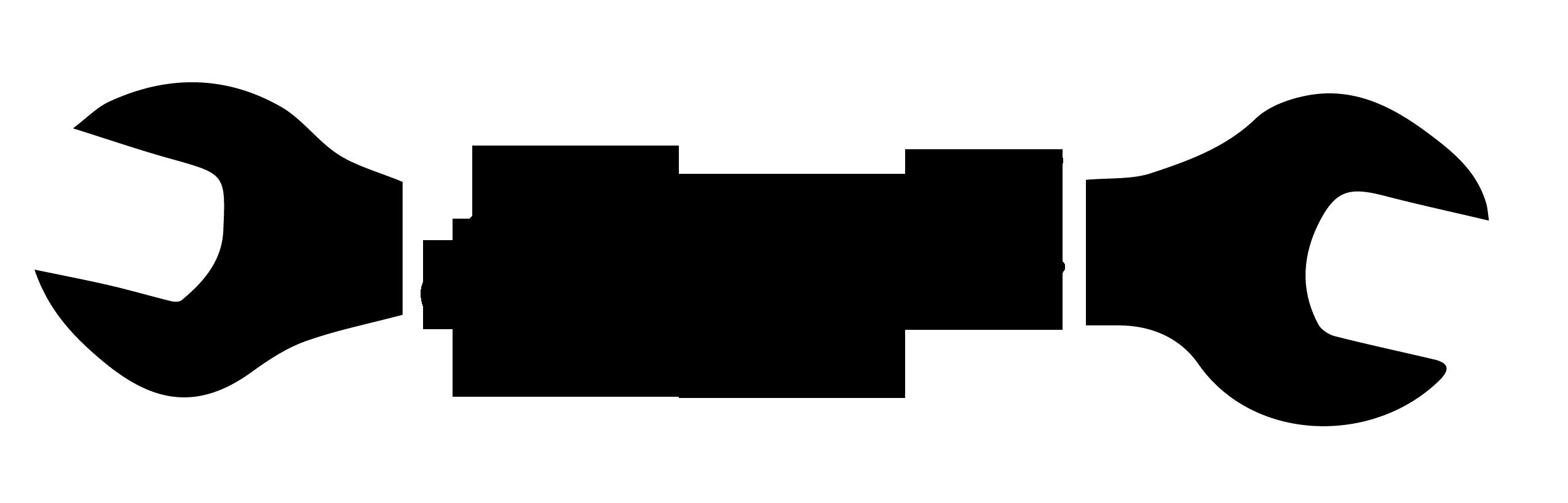 www.stepni.com Logo