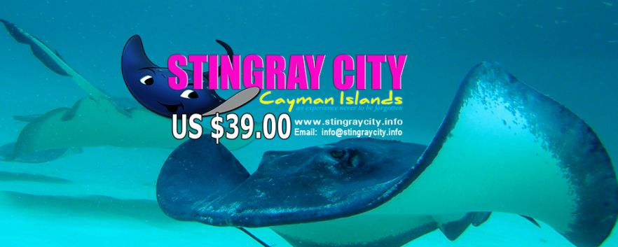 Stingray City Cayman Islands Logo