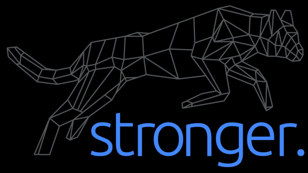 Stronger International, Inc. Logo