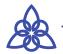 tarasatarapress Logo