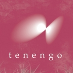 Tenengo Design Logo