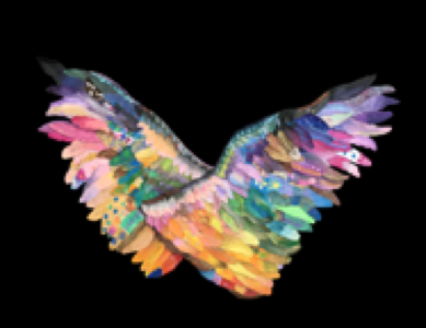 The Spread Your Wings Project Logo