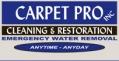 thecarpetpro Logo
