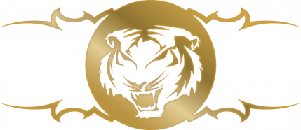 The Tiger Consultant Inc. Logo