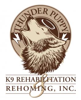 Thunder Puppy K9 Rehab and Rehoming Logo
