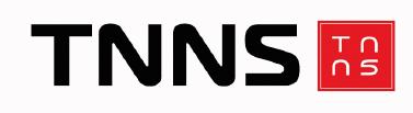 TNNS LLC Logo