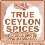 trueceylonspices Logo