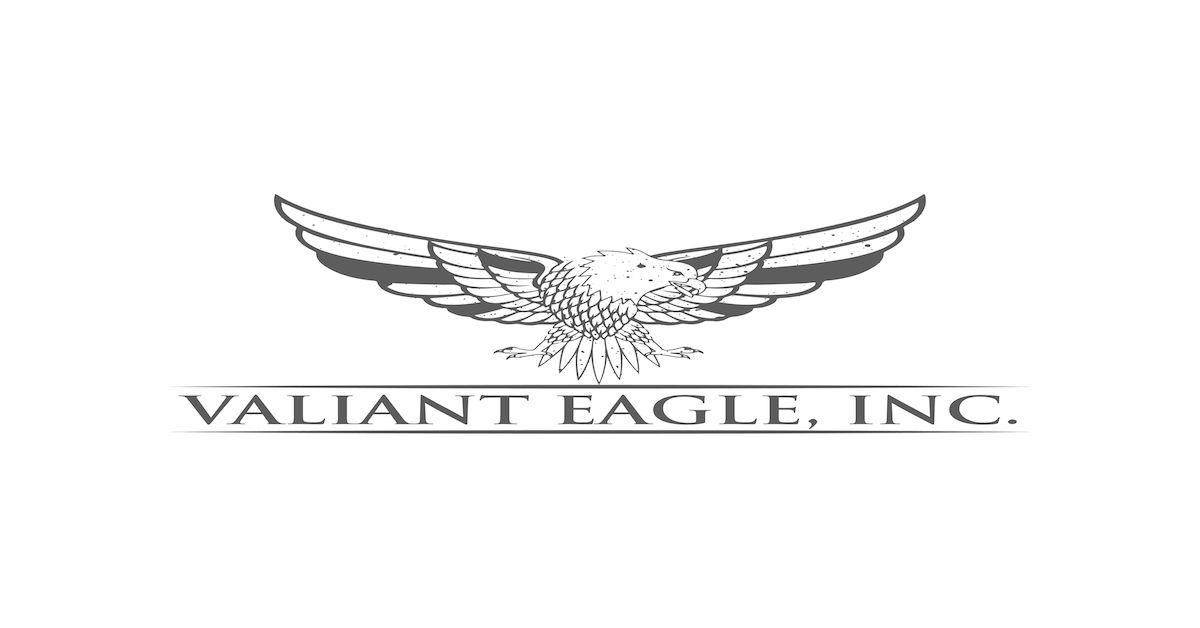 Valiant Eagle, Inc Logo