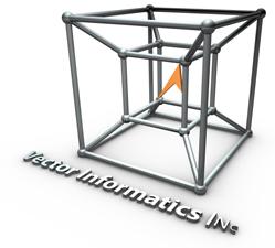 Vector Informatics Inc Logo