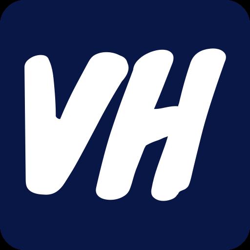 VideoHunt Logo