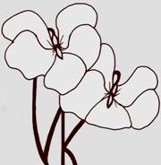 violetsknickers Logo
