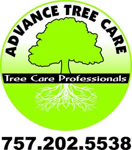 Virginia Beach Tree Care Logo