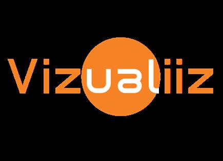 vizualiiz Logo