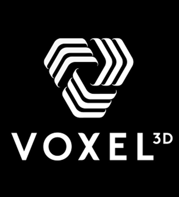 Voxel 3D Model Making Logo