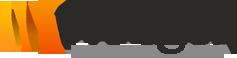 webgenservices Logo