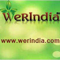 werindia Logo
