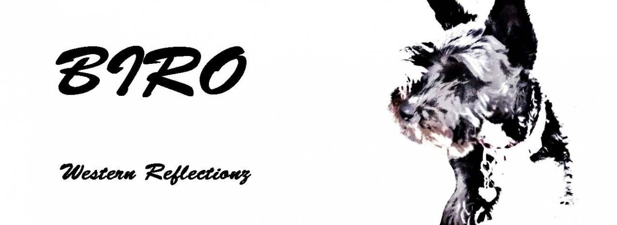 Western Reflectionz Logo