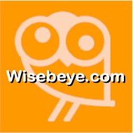 Wisebeye.com Logo