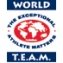 World TEAM Sports Logo