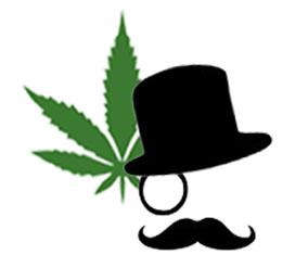 Cannabis Domain Finder Logo